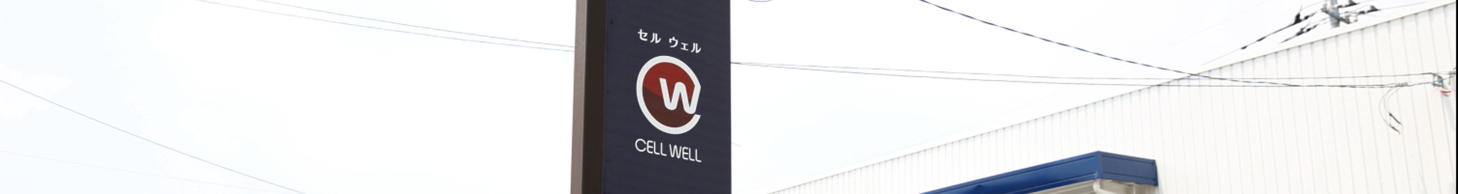 CELL WELL(セルウェル)